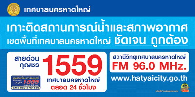hotline1559